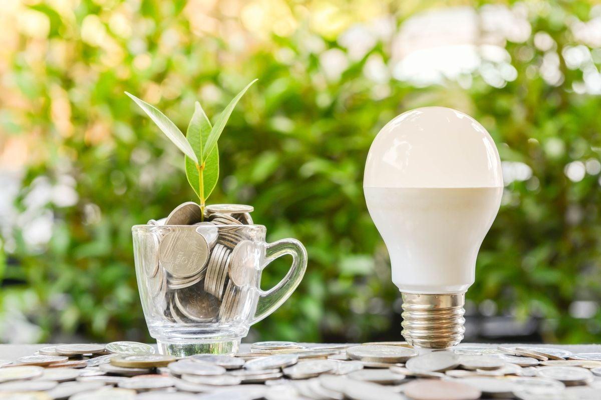 oświetlenie ekologiczne