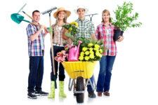 program zielona ławeczka - dofinansowanie terenów zielonych