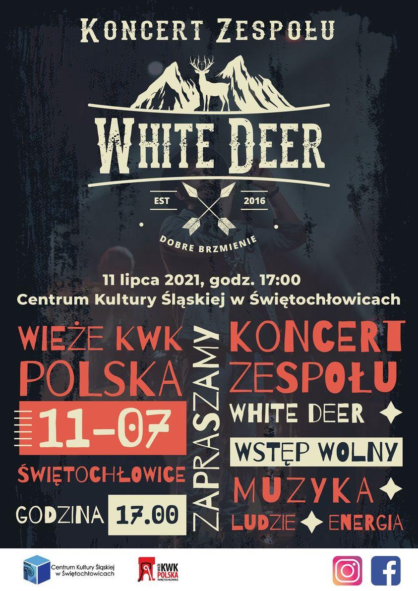 koncert white deer